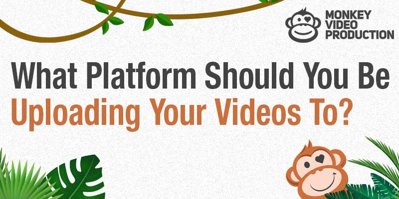 What Platform Should You Be Uploading Your Videos To?